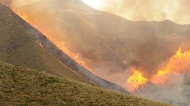 حريق جبل